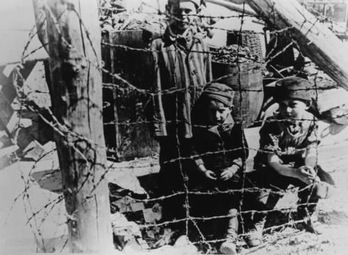 Buchenwaldkinder